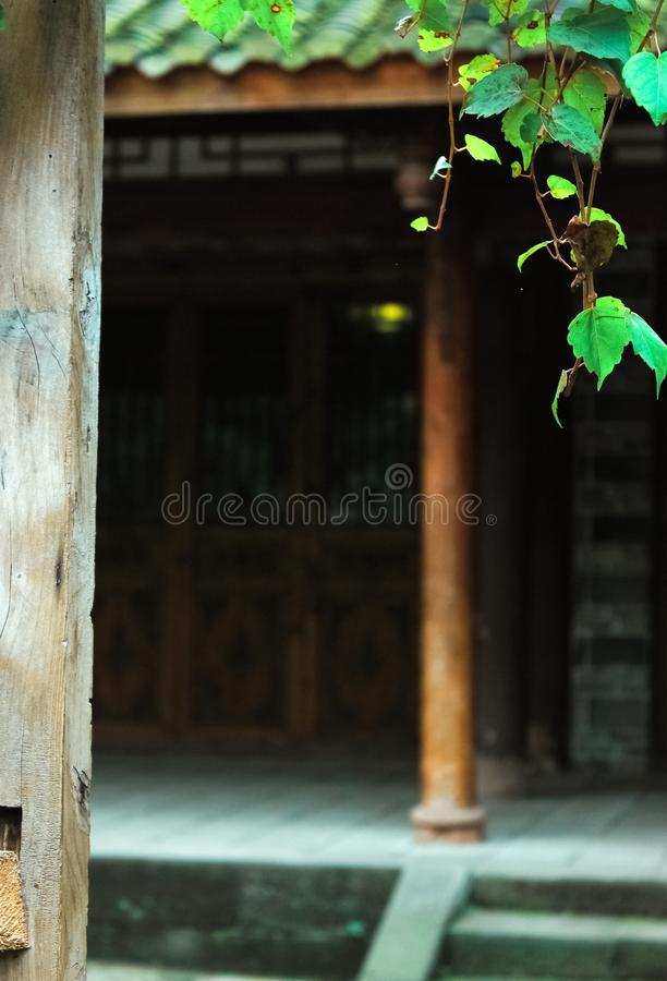 Wooden buildings and green plants.Ancient architecture with Chinese characteristics. Ancient Chinese architecture, open wooden doors and drooping vines, green stock image