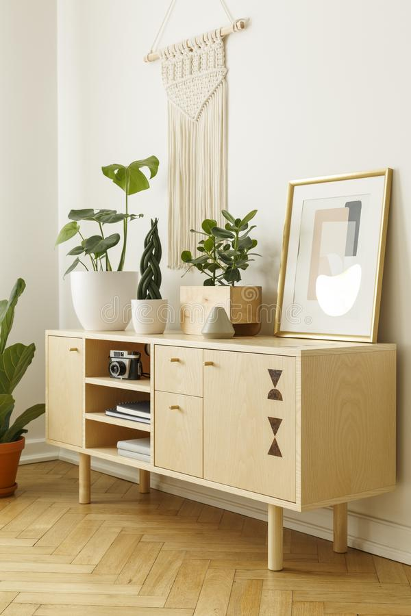 Wooden cabinet decorated with plants, camera and painting on a white wall. Side view stock photography