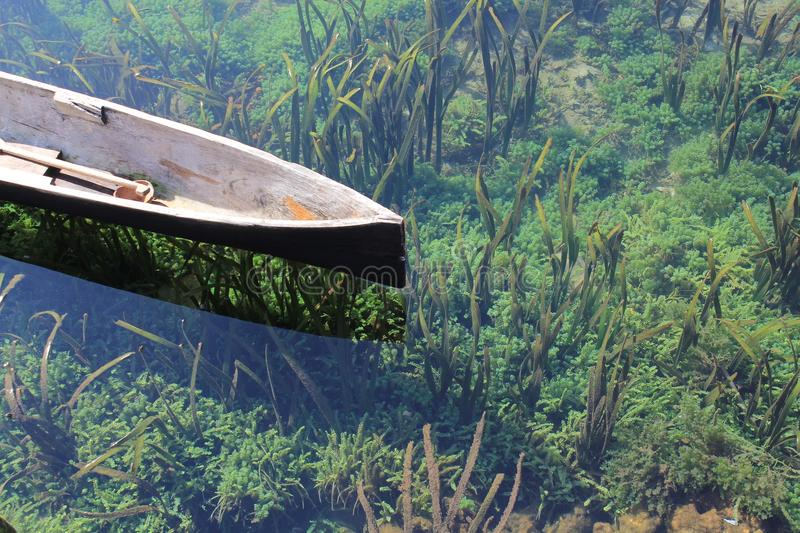 Wooden Canoe In Pond Free Public Domain Cc0 Image