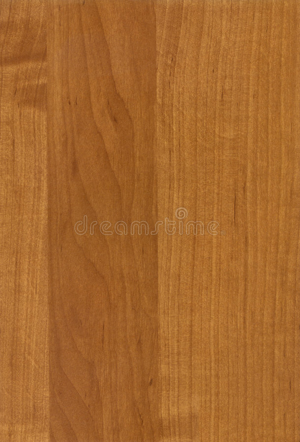 Download Wooden Caucasian Alder Texture Stock Photo - Image: 3497828