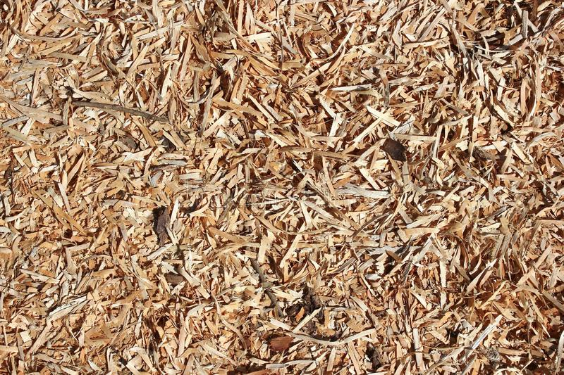Download Wooden chips background stock photo. Image of sawdust - 25961734