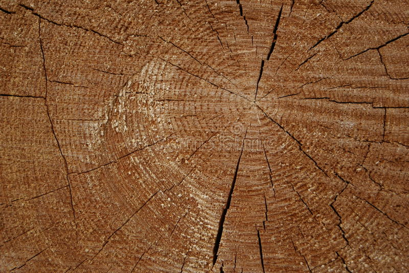 Wooden Circle With A Split Cuts Stock Images