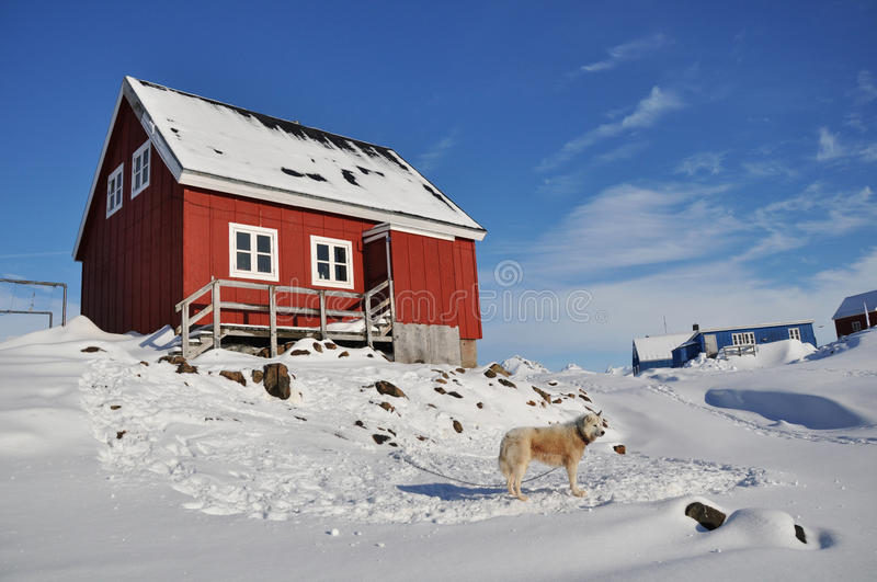 Wooden colourful cabin and dog stock photography