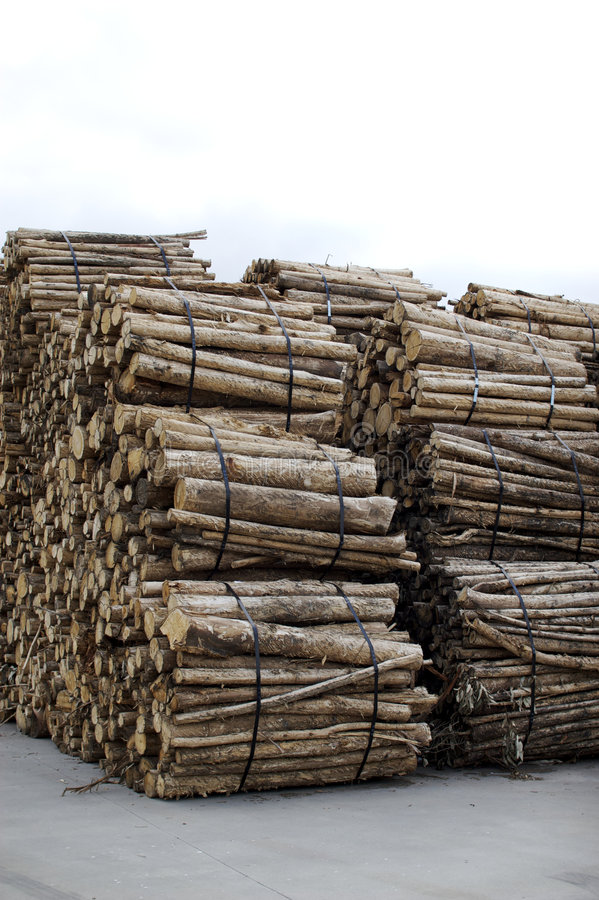 Wooden columns royalty free stock image