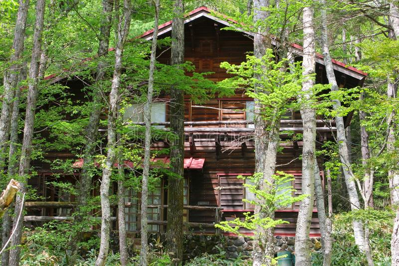 Wooden chalet house forest trees, Kamikochi, Japanese Alps royalty free stock photo