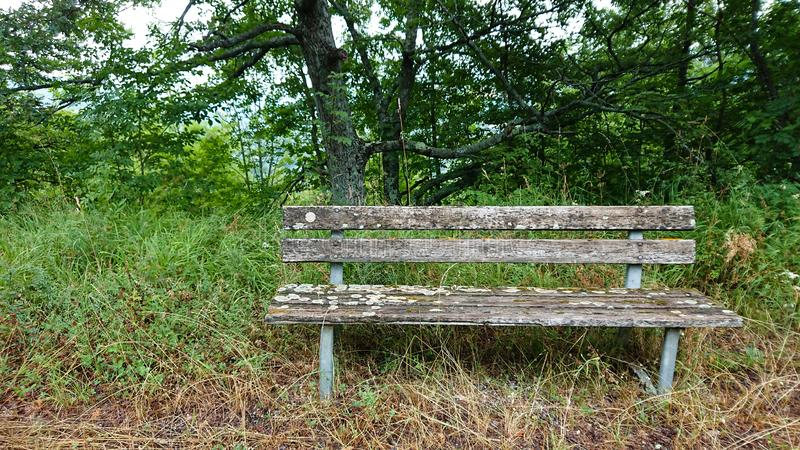 Wooden Country Bench. Beside a country road. Seat royalty free stock photo