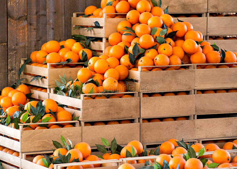 Wooden crates of fresh ripe oranges royalty free stock photos