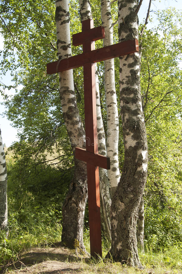 Wooden cross in the forest. A wooden cross in the forest royalty free stock images