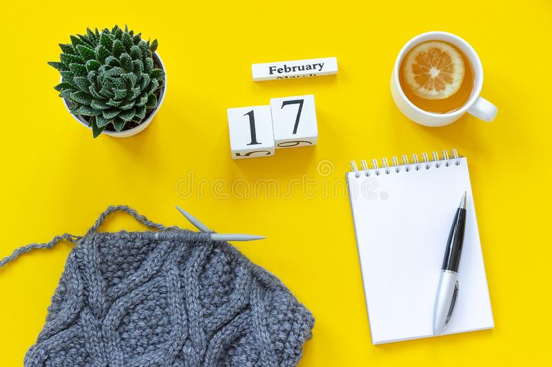 Wooden cubes calendar February 17th. Cup of tea with lemon, empty open notepad for text. Pot with succulent and gray fabric on. Wooden cubes calendar February stock photography