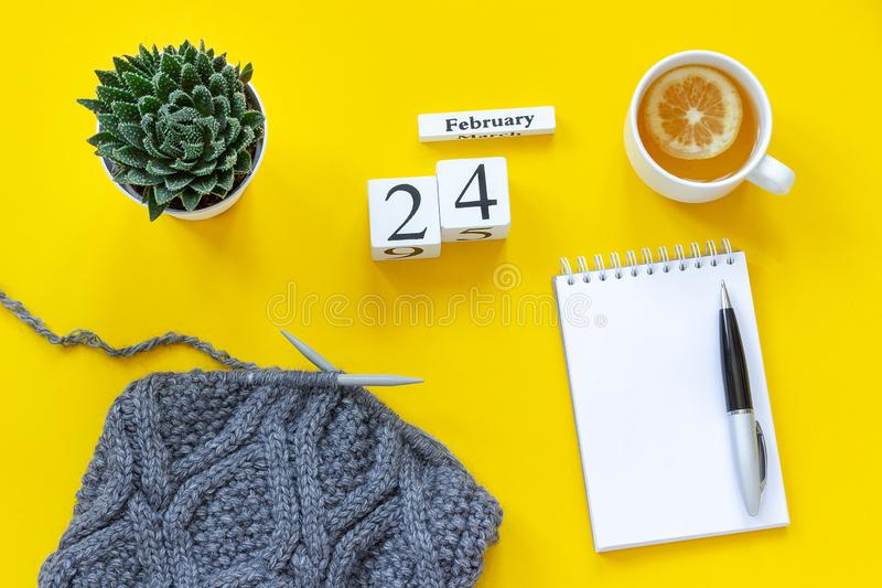 Wooden cubes calendar February 24th. Cup of tea with lemon, empty open notepad for text. Pot with succulent and gray fabric on stock image