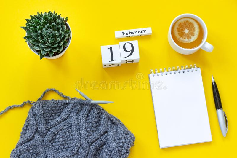 Wooden cubes calendar February 19th. Cup of tea with lemon, empty open notepad for text. Pot with succulent and gray fabric on. Wooden cubes calendar February royalty free stock photos