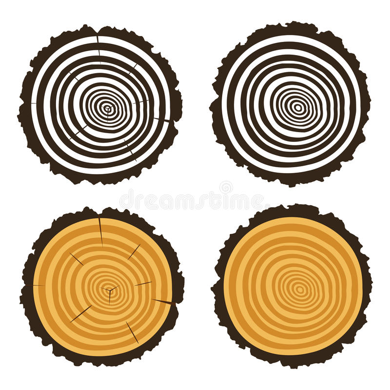 Wooden cut of a tree log with concentric rings, vector royalty free illustration