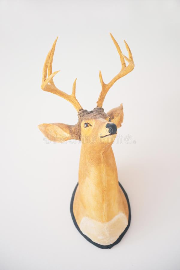 Awesome Real Deer Head Wall Decor Gallery - Wall Art Collections ...