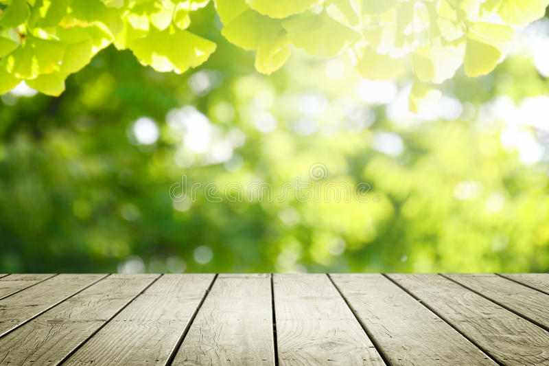 Wooden Desk And Blur Green Forest Background. Stock Photo