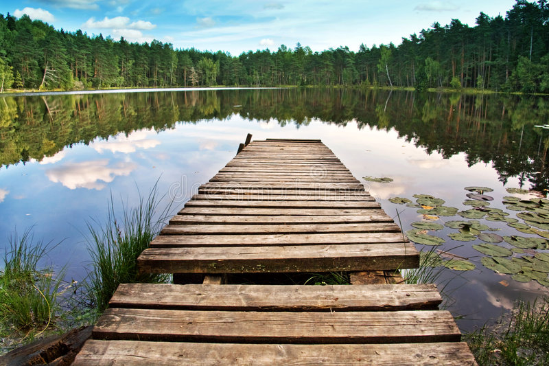 Wooden dock. On beautiful forest lake royalty free stock photography