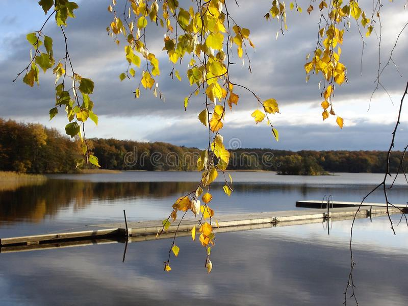 Wooden dock on lakefront in autumn stock photography