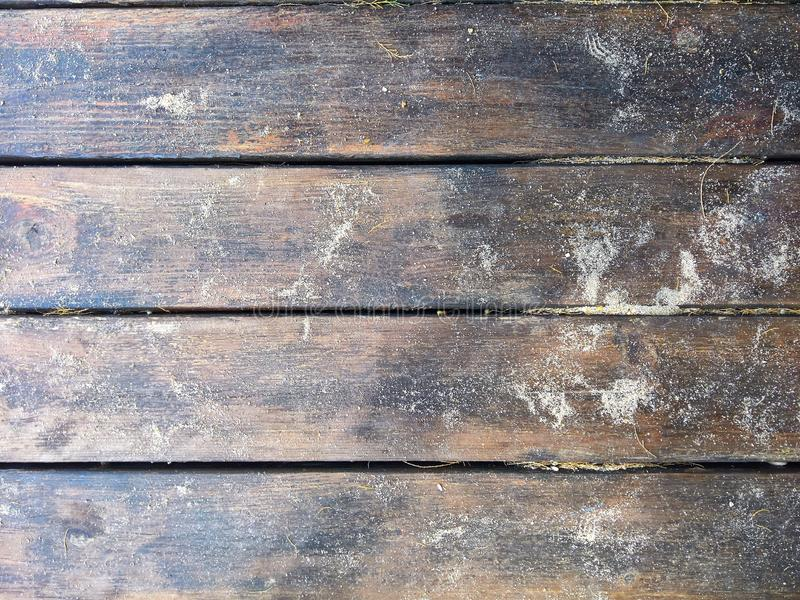 Wooden dock in summer royalty free stock images