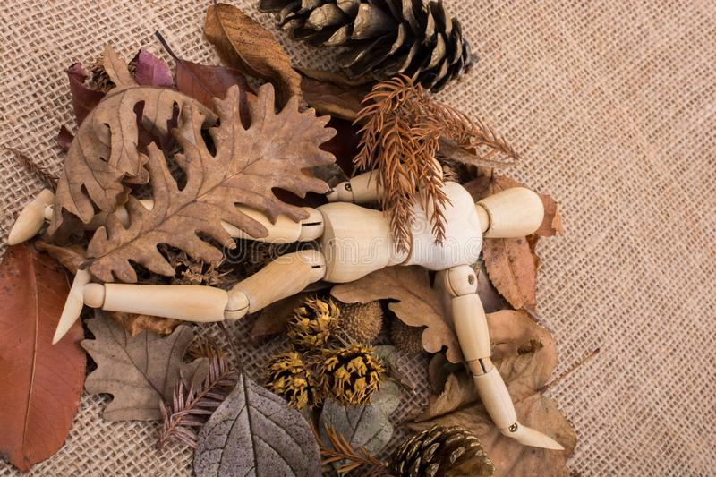 Wooden dolls posing amid leaves. Wooden dolls posing amid autumn background stock photos