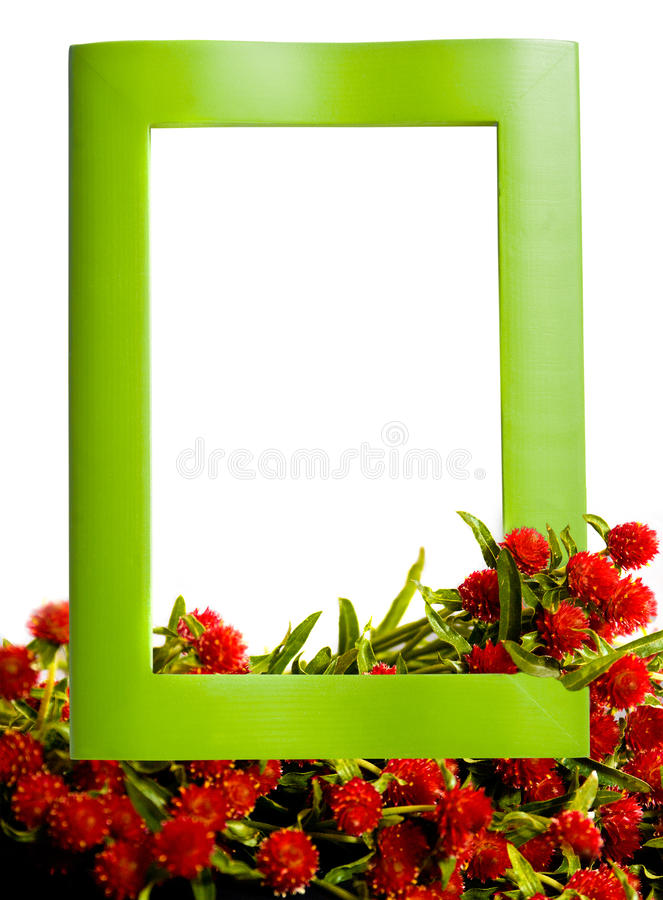 Wooden feame with red flowers stock photo