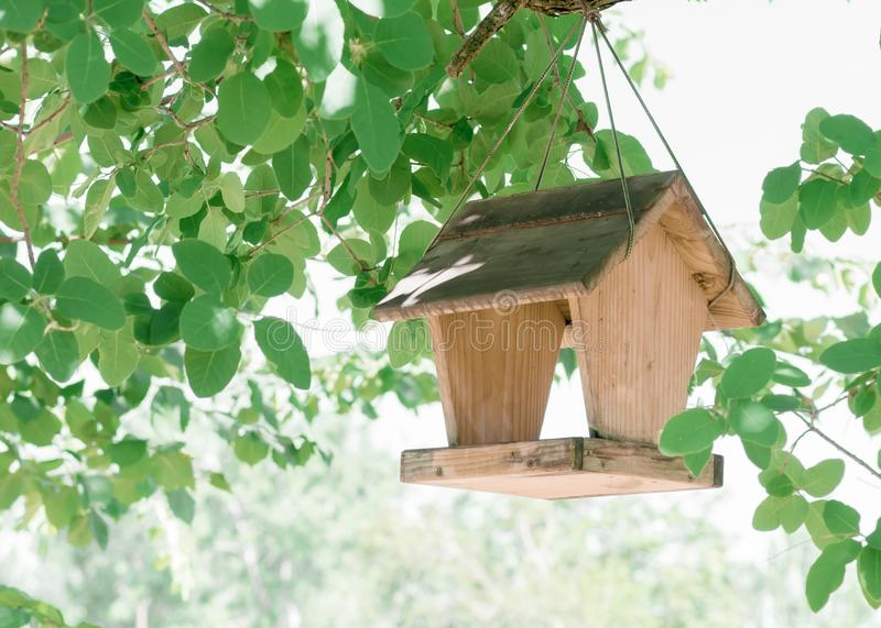 Wooden feeder with a roof for birds and squirrels, hanging on a tree branch on a rope. Feeding animals.  royalty free stock photos