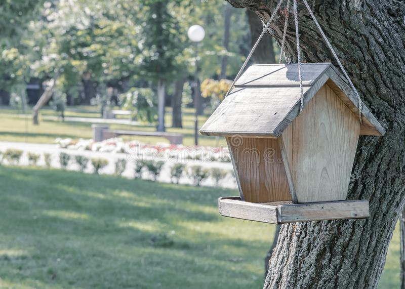 Wooden feeder with a roof for birds and squirrels hanging on a tree branch on a rope in summer city park. Feeding. Wooden feeder with a roof for birds and royalty free stock photos