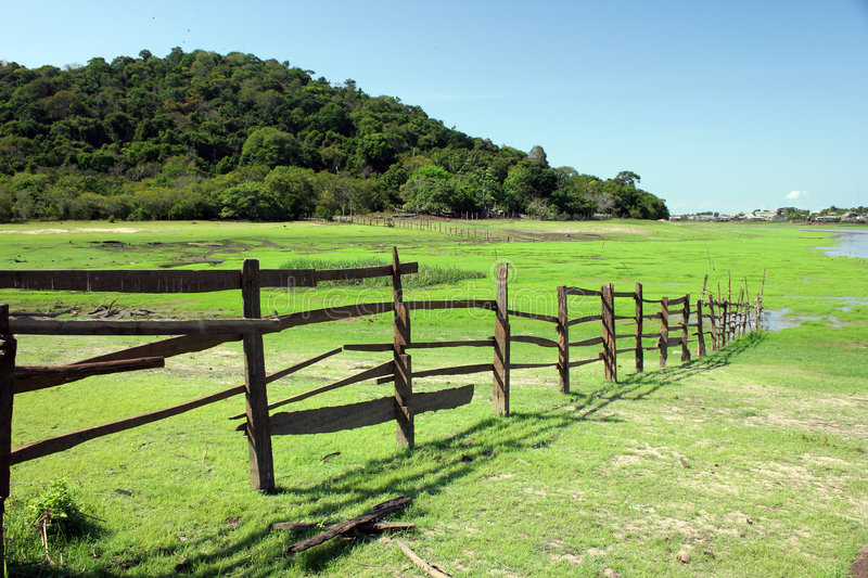 Download Wooden fence stock image. Image of spring, green, texas - 8869103