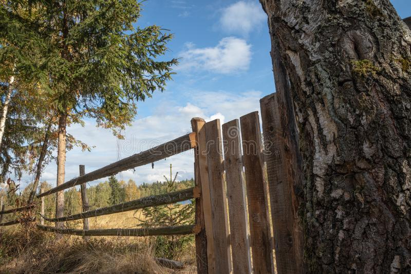 Wooden fence in country side, meadow, green grass and a blue sky in background royalty free stock images