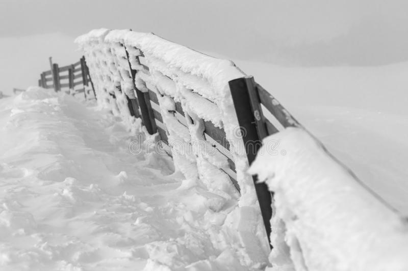 Wooden fence covered with snow in black and white royalty free stock photos