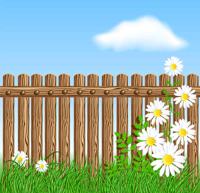 Download Wooden Fence On Green Grass With Daisy Stock Vector - Image: 29739924