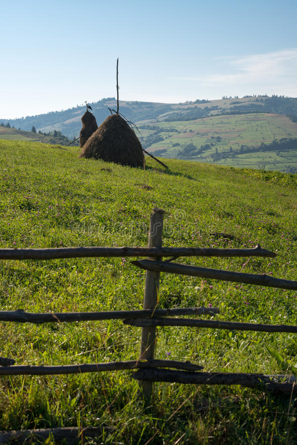 Wooden fence, haystacks and white stork in the Ukrainian Carpathians royalty free stock photos