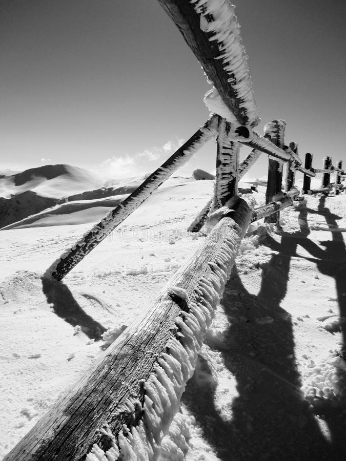Wooden fence in ice frost. Photo depicting a wooden fence full of snow and ice frost on a high altitude, shot on a sunny day. Black & white image in perspective stock photo