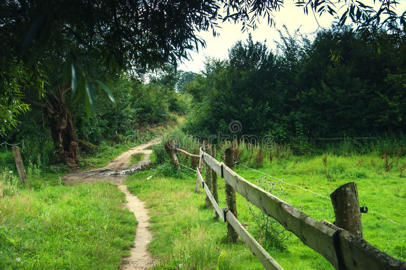 Wooden fence on meadow royalty free stock photo