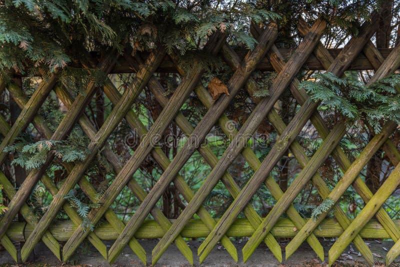 Download Wooden Fence stock illustration. Illustration of fence - 90780768