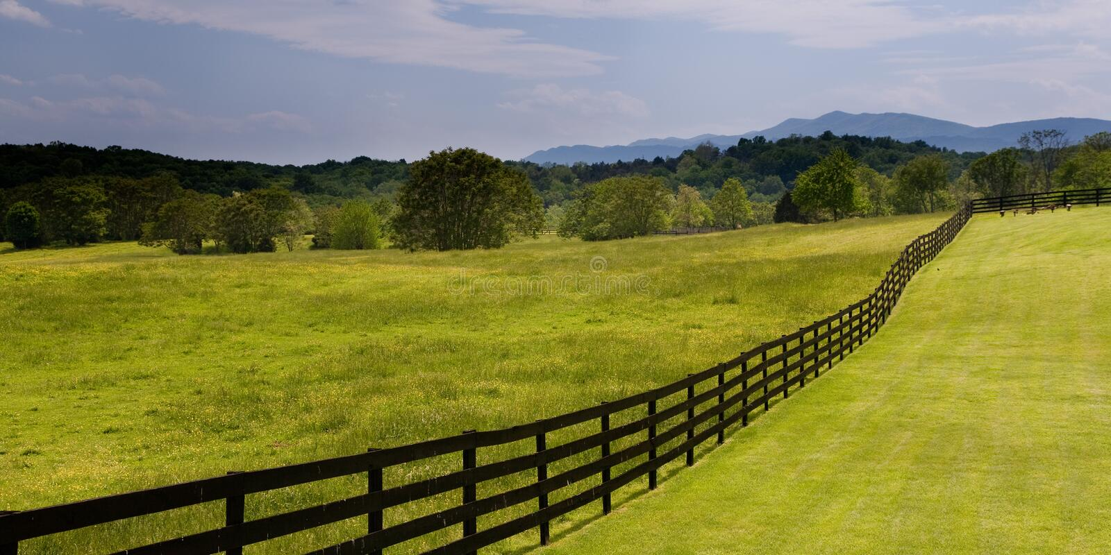 Wooden fence running through green field royalty free stock photo
