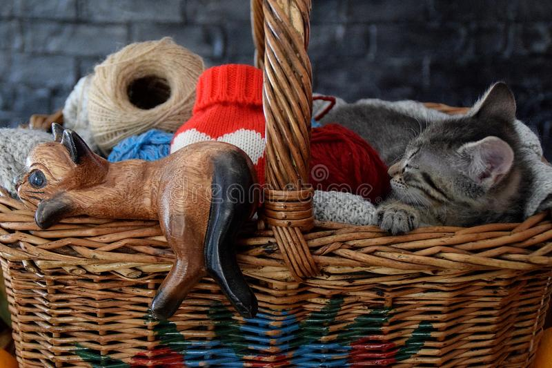 Wooden figure of cat and animal in the basket royalty free stock photography
