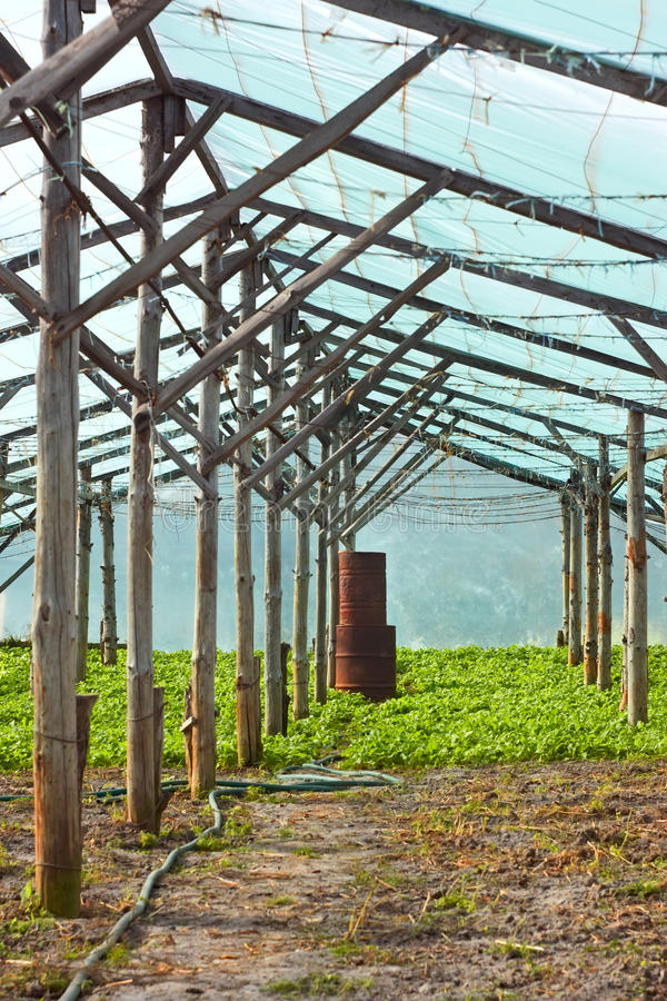 Download Wooden Film Greenhouse After Harvest Stock Image - Image: 35114101