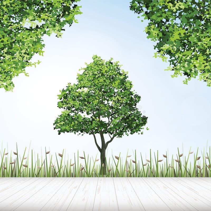 Wooden floor with framing of green tree. Wooden floor with framing of green tree for outdoor abstract background. Vector illustration vector illustration