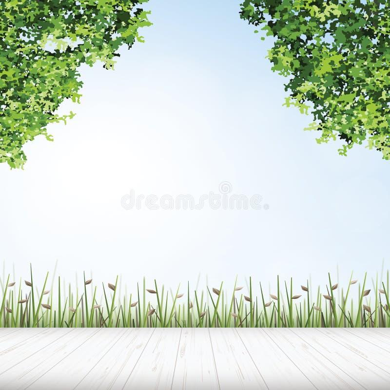 Wooden floor with framing of green tree. Wooden floor with framing of green tree for outdoor abstract background. Vector illustration stock illustration