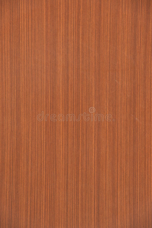 Wooden Floor,Hardwood floor detail. Abstract and architecture backdrop background backgrounds blank brown buildings copy exotic floor grain grained hardwood home royalty free stock images