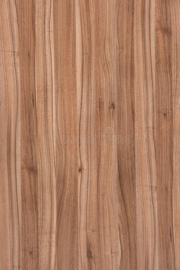 Wooden Floor,Hardwood floor detail. Abstract and architecture backdrop background backgrounds blank brown buildings copy exotic floor grain grained hardwood home stock image