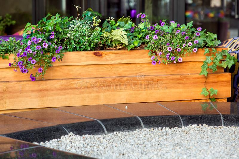 The wooden flowerpot with flowers. Wooden flowerpot with flowers on black marble covered with light gravel stock photography