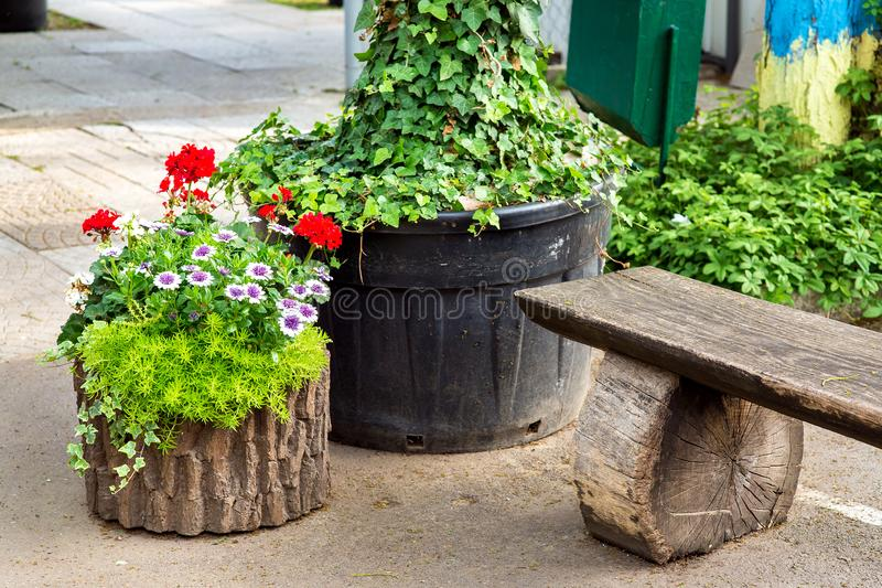 Wooden flowerpot with flowers in the form of a stump. Wooden flowerpot with flowers in the form of a stump next to a wooden park bench with a pedestrian royalty free stock images