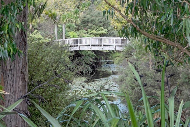 Wooden Footbridge over Small Waterway stock image
