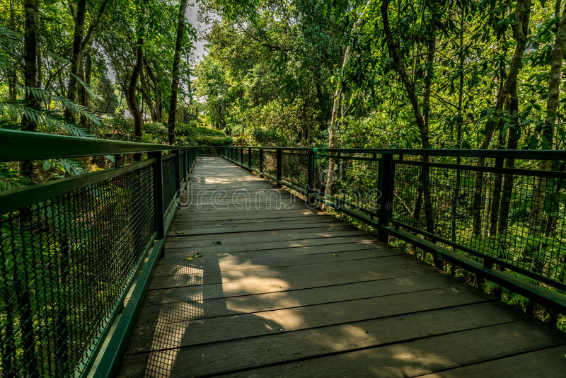 Wooden footbridge in the park royalty free stock image