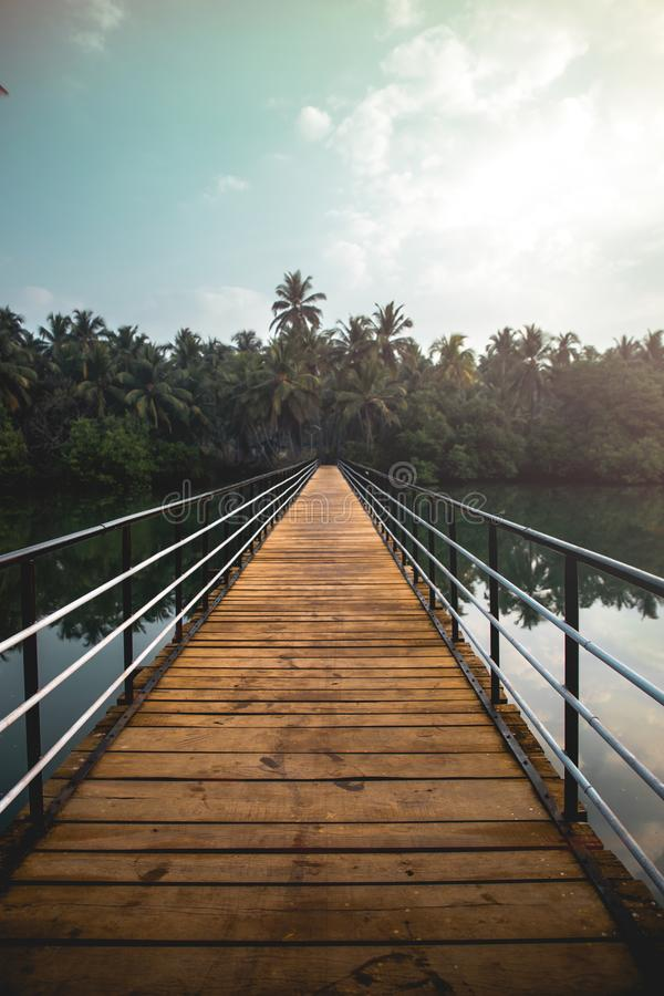 Wooden footbridge on river. Beautiful landscape in south India Udupi. vertical stock photos