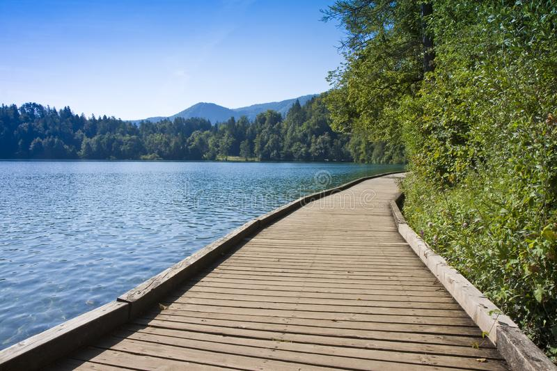 Wooden footpath along Bled lake with a wooden bench in summer season - Europe - Slovenia royalty free stock photos