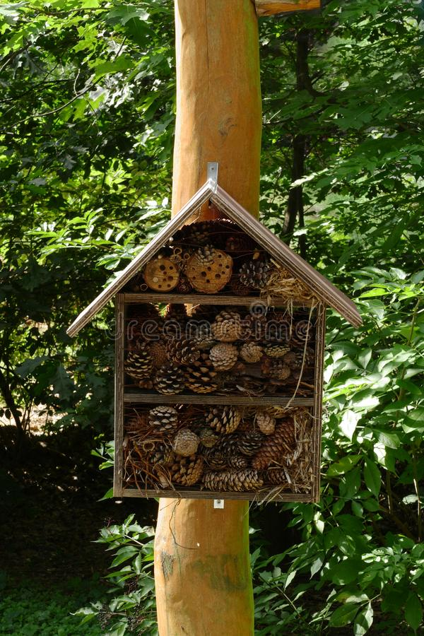Wooden forest bug hotel stock photo