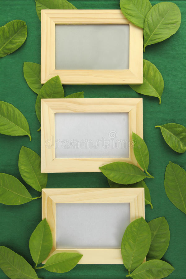 Wooden Frame Stock Image