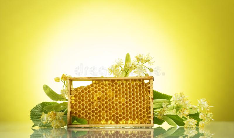Wooden frame with bee honeycombs, next to fragrant linden flowers, on yellow background stock photo