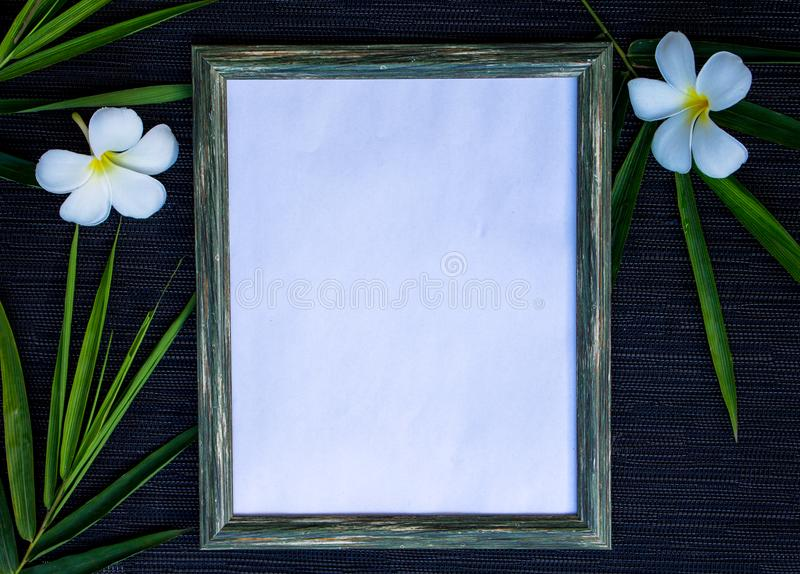 Wooden frame with white paper on black background. Tropical floral decor around photo frame mock-up. Summer flat lay with green leaf and frangipani blossom stock photo